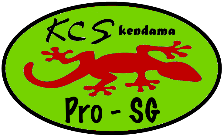 Pro-SG logo seul